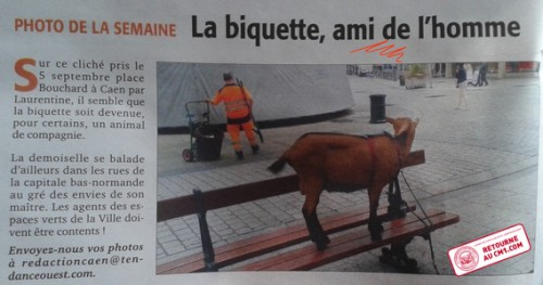 photo_de_ma_biquette_ds_journal__1.jpg